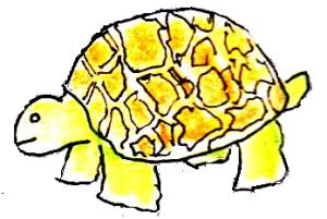 Pale Tortoise Clipart