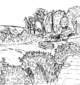 """Dorset - Giant Garden (Lineart)"" By C. A. Brown"