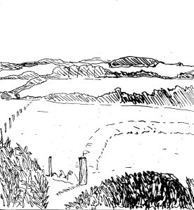 """Dorset - Wilds (Lineart)"" By C. A. Brown"