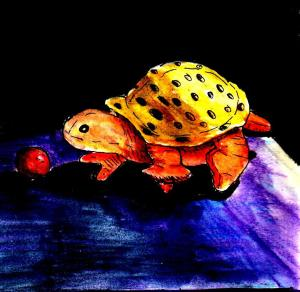 """""""Adorable Tortoise And Aniseed Ball"""" By C. A. Brown"""