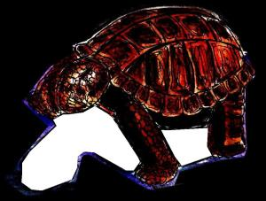 This is the outline of the shadow beneath the tortoise.